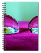 The Eye Of The Petal II Spiral Notebook