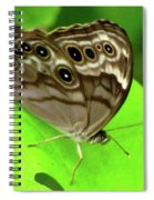 The Eyes Are Watching At You Spiral Notebook