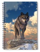 The Eyes Of Winter Spiral Notebook