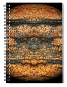 The Face Of Geology Spiral Notebook