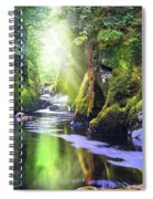 The Fairy Glen Gorge River Conwy Spiral Notebook