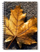 The Fall Of Autumn Spiral Notebook