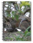 The Fight For Life Spiral Notebook