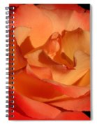 The Final Rose Of Summer Spiral Notebook