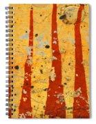 The Fire Spiral Notebook