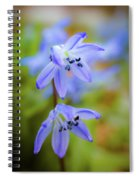 The First Spring Flowers Spiral Notebook
