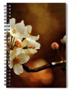 The Fleeting Sweetness Of Spring Spiral Notebook