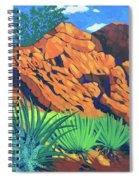 The Flicker Trail Spiral Notebook
