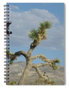 The Flight Of Raven. Lucerne Valley. Spiral Notebook