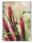The Flight Of The Bee Spiral Notebook