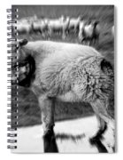 The Flock Is Safe Grayscale Spiral Notebook