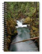 The Flow Of It All  Spiral Notebook