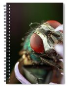 The Fly Spiral Notebook