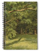 The Forest Clearing Spiral Notebook