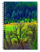 The Forest Echoes With Laughter 2 Spiral Notebook