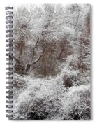 The Forest Hush Spiral Notebook