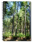 The Forest Spiral Notebook
