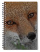 The Fox 4 Upclose Spiral Notebook