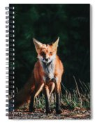 The Fox Spiral Notebook