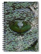 The Frog Spiral Notebook