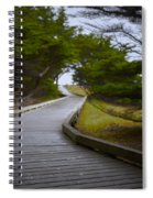 The Fuzzy Path To Nowhere Spiral Notebook