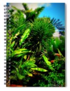 The Garden Path Spiral Notebook
