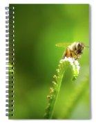 The Gatherer 2 Spiral Notebook