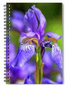 The Gentleness Of Spring 4 - Paint Spiral Notebook