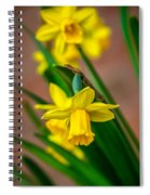 The Gentleness Of Spring Spiral Notebook