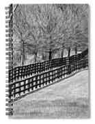 The Geometry Of Spring - Paint Bw Spiral Notebook