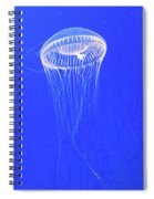 The Ghost In The Water Spiral Notebook