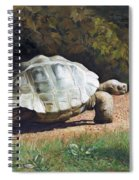 The Giant Tortoise Is Walking Spiral Notebook