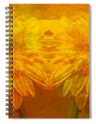 The Gold Mirror Spiral Notebook
