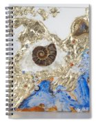 The Golden Flow Of Expansion Spiral Notebook