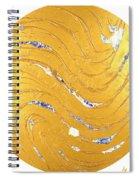The Golden Flow Of Peace Spiral Notebook