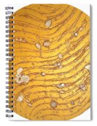 The Golden Flow Of Self-worth Spiral Notebook