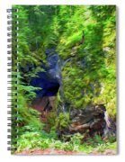 The Gorge In The Wood Spiral Notebook