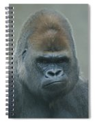 The Gorilla 4 Spiral Notebook