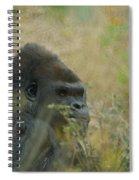 The Gorilla 5 Spiral Notebook