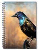 The Grackle Spiral Notebook