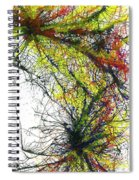 The Grand Symphony Of The Universe #635 Spiral Notebook
