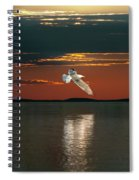 The Holy Spirit Spiral Notebook