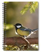 The Great Tit   Spiral Notebook
