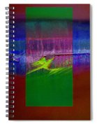 The Green Dragon Spiral Notebook