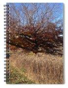The Green Grass Road Spiral Notebook