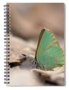 The Green Hairstreak Spiral Notebook