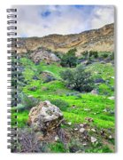 The Greening Of The Las Llajas Trail  Spiral Notebook