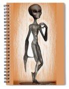 The Grey  Spiral Notebook