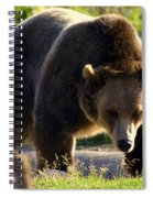The Grizz Spiral Notebook