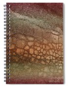 The Ground At My Feet Spiral Notebook